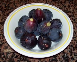 20b Figs